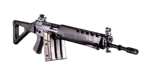 SIG SG 550 Swiss Army Assault Rifle image - Military