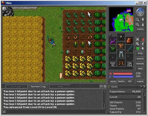 Tibia Review and Download – MMOBomb